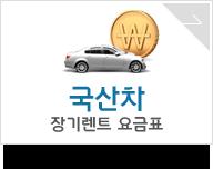 국산차 장기렌트 요금표
